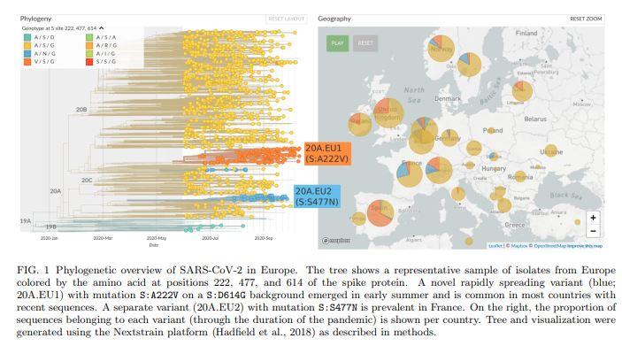 En el mapa de la derecha, puede observarse la presencia de esta variante (naranja) en varios países europeos.