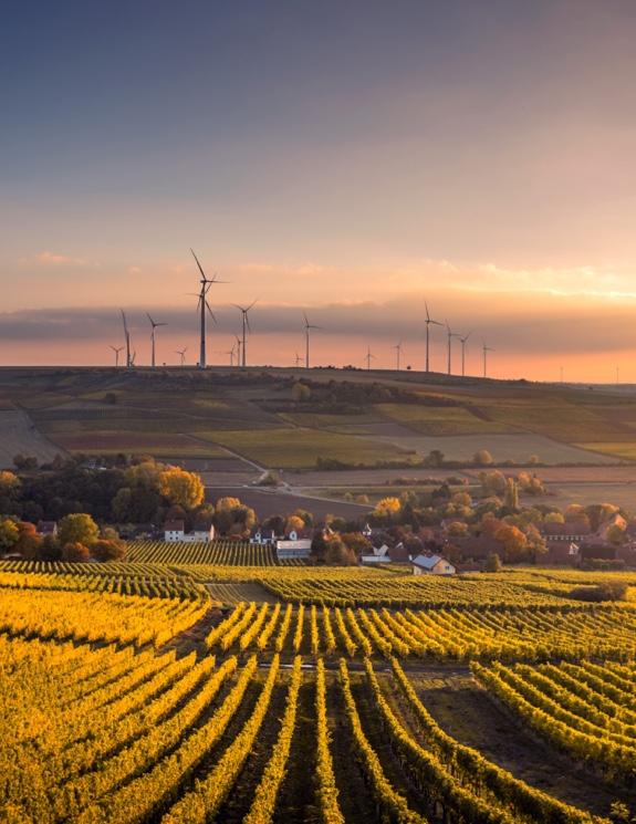 Molinos de energía eólica en el horizonte