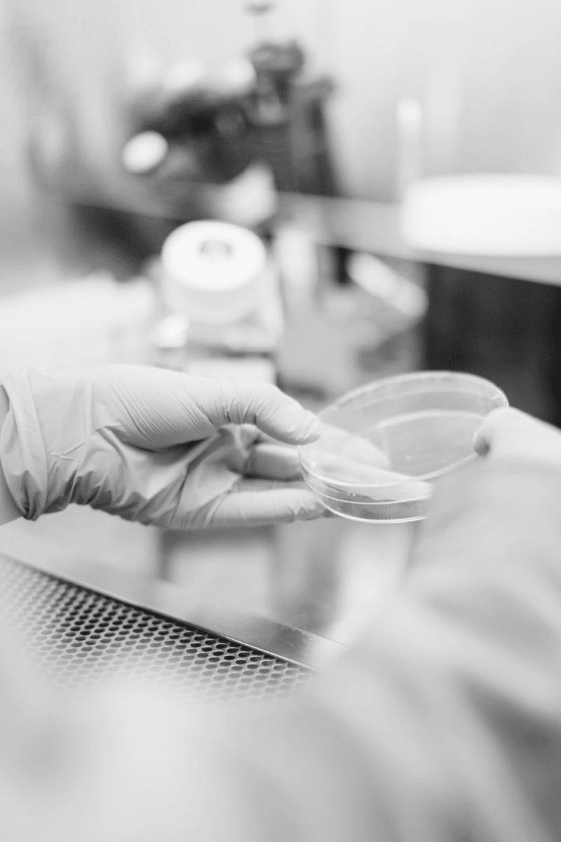 La resistencia a los antibióticos es un riesgo para la salud