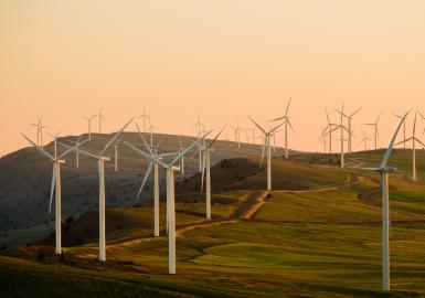 2025: electricidad de origen renovable