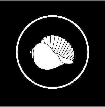 Icono de una caracola