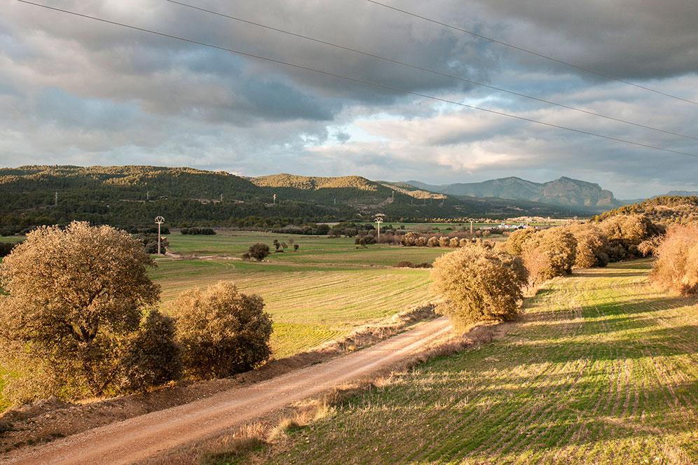 El embalse de la Peña, Gállego arriba, está contaminado con pesticida