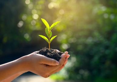 2030: financiación verde